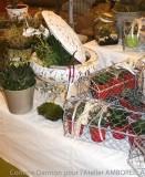 plantes variées