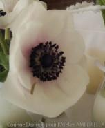 Centre de table blancs pour un mariage sur le thème de l'hiver